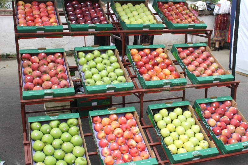 Moldovan apples were not in demand in Europe, due to low prices